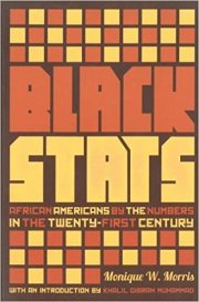 Black Stats: African Americans by the Numbers in the Twenty-first Century by Monique W. Morris